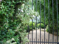 Les jardins d\'Agapanthe
