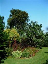Le Jardin de Saboutot